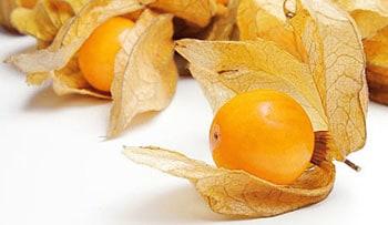 La uchuva fruta conocida en España como alquenqueje o más comúnmente como physalis