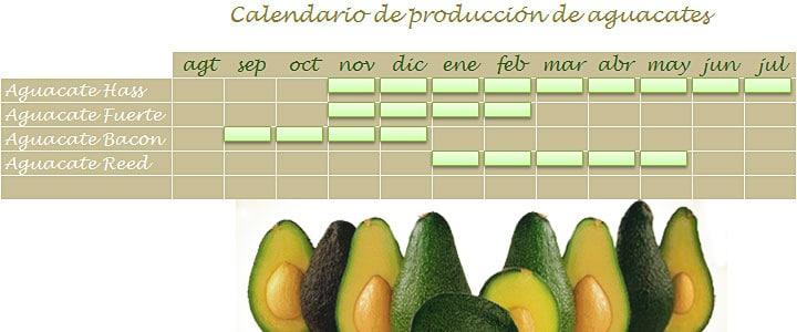 Calendario de cosecha de aguacates en Málaga