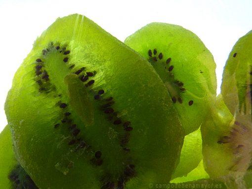 kiwi deshidratado de Campo de Benamayor