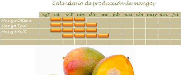 Calendario de cosecha de mango en Málaga
