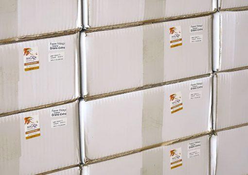 Cajas de Pasas de Málaga en formato a granel