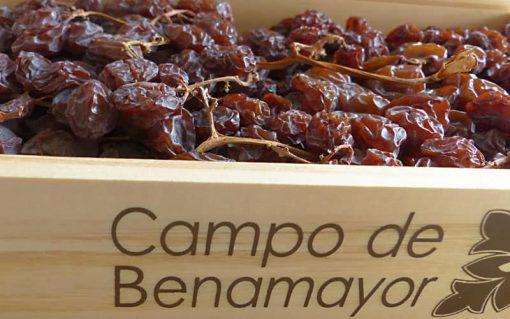 Estuche de madera con pasas en rama de la variedad Moscatel de Málaga