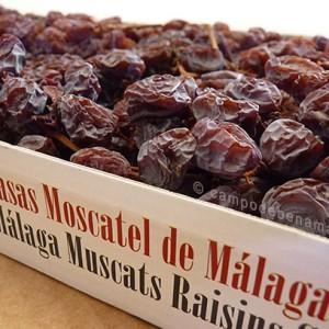 Pasas en rama. estuche de pasas de Málaga en racimo de calidad superior