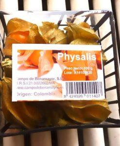 bandeja de physalis (alquequenjes)