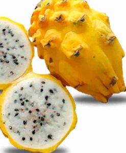 Esta fruta de pitaya amarilla la puedes comprar online