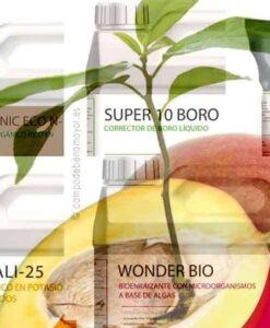 Abonos para mango en agricultura de tipo convencional