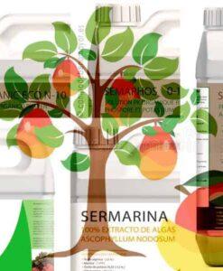 Fertilizantes para mango en cultivo ecológico