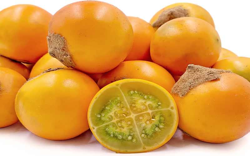 Fruta de la planta de lulo