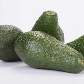 Fruta que produce la variedad de aguacate Pinkerton