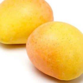 Esta es la fruta que produce la planta de mango Kensington Pride