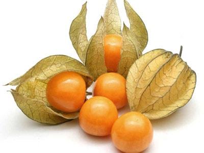 La tienda de frutas tropicales online