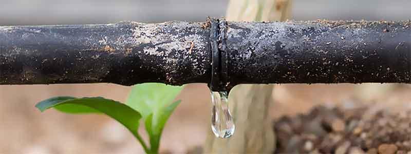 Depósitos de cal en líneas de riego debido a la dureza del agua