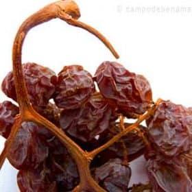 Pasas de Málaga obtenidas de uva Moscatel
