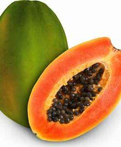 Plantas de papaya